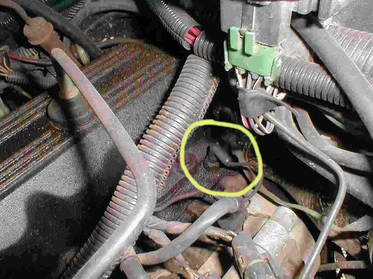 Jeep Cherokee Engines Renix Non Ho Engine Sensor Diagnostics Block Coolant Drain Plug Almost Sensors